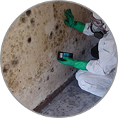 man cleaning mold on walls blount's complete home services fire water restoration termite pest control augusta ga